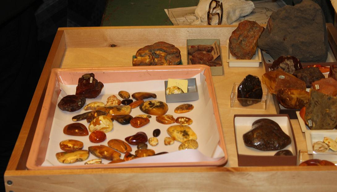 The Latvian Museum of Natural History Geological collection