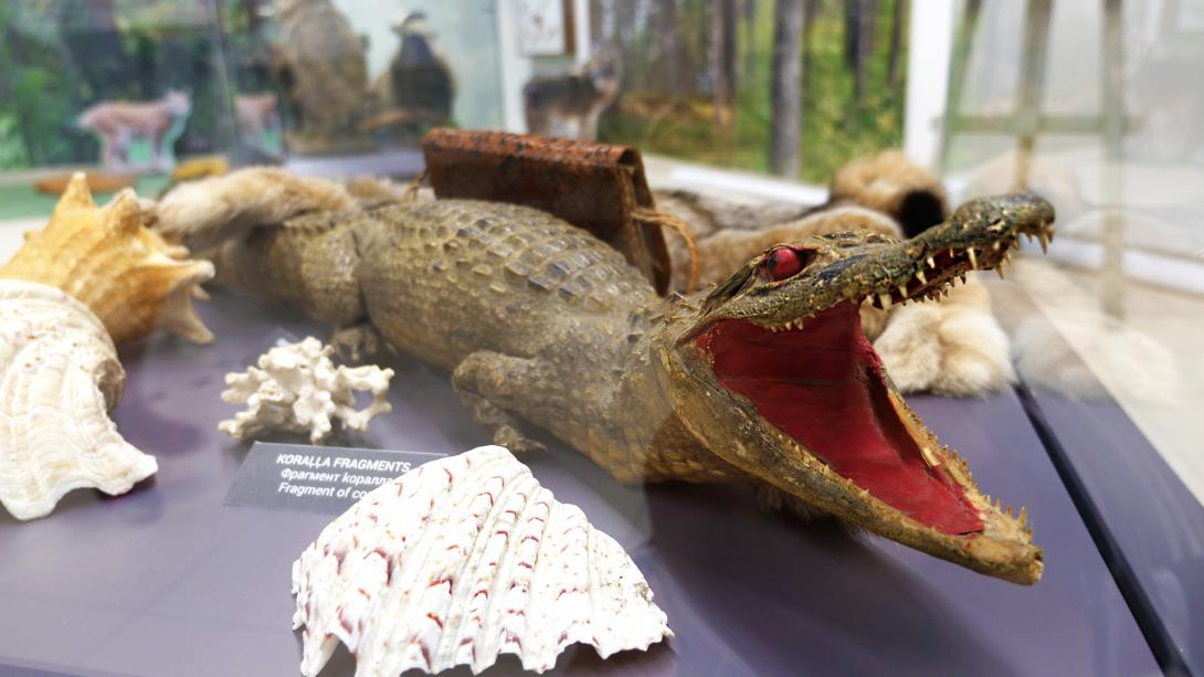 "Exhibition ""The Latvian Museum of Natural History 175"" at the shopping center ""Aleja"""
