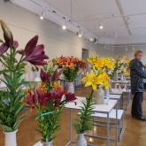 "Exhibition ""Lilies 2019"""