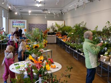 "Exhibition ""Herbs and vegetables 2019"""