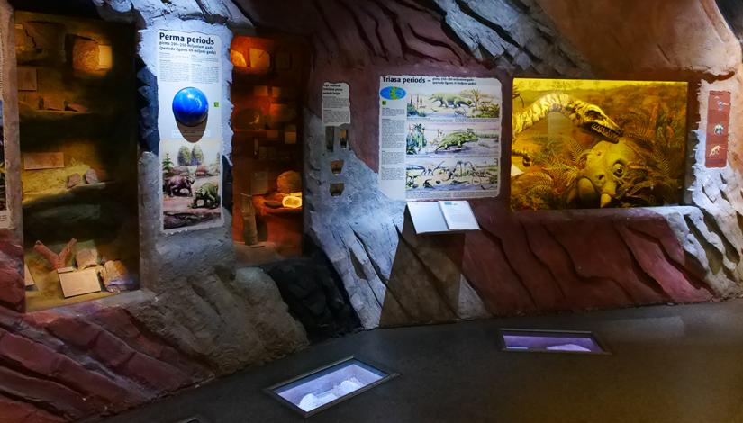 "Exhibition ""Evolution of the Earth and the Biosphere"""